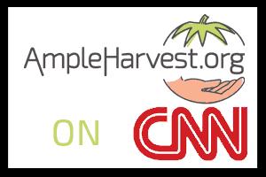 AH-CNN