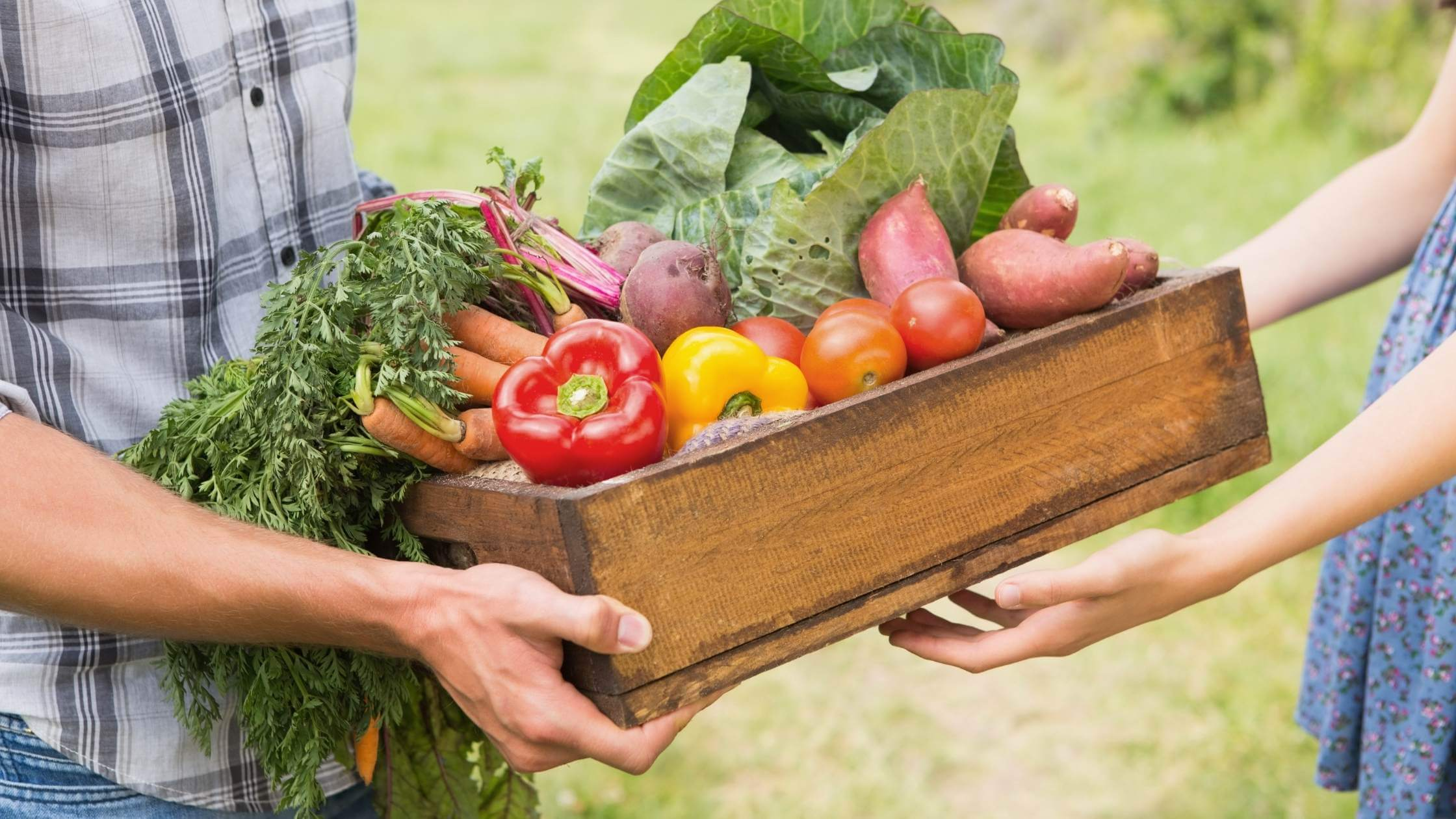 person handing box of vegetables to another person