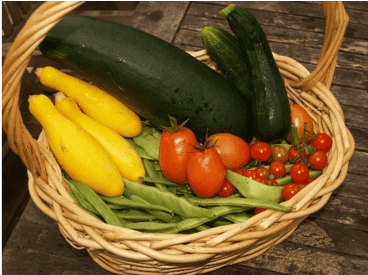 basket of tomatoes, zucchini , and greens