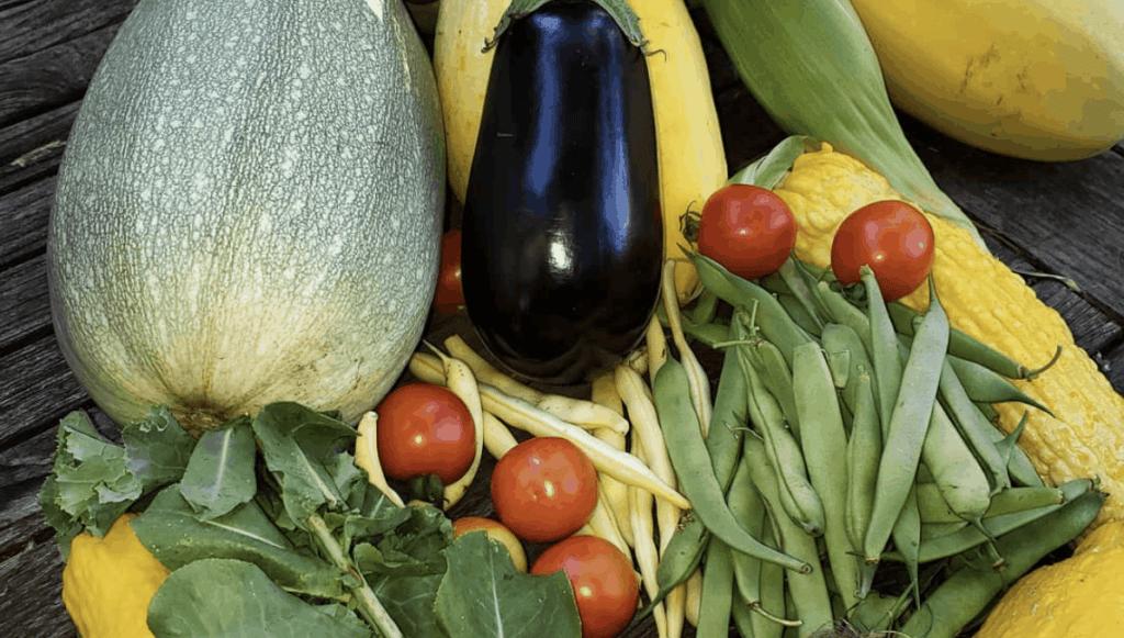 pile of zucchini, green beans, eggplant