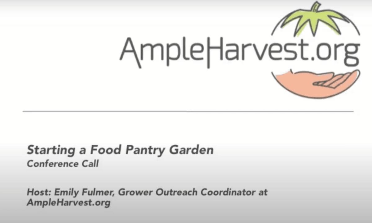 Starting A Food Pantry Garden