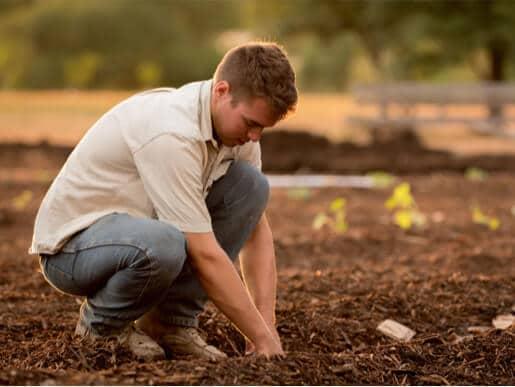 Man planting seeds in garden