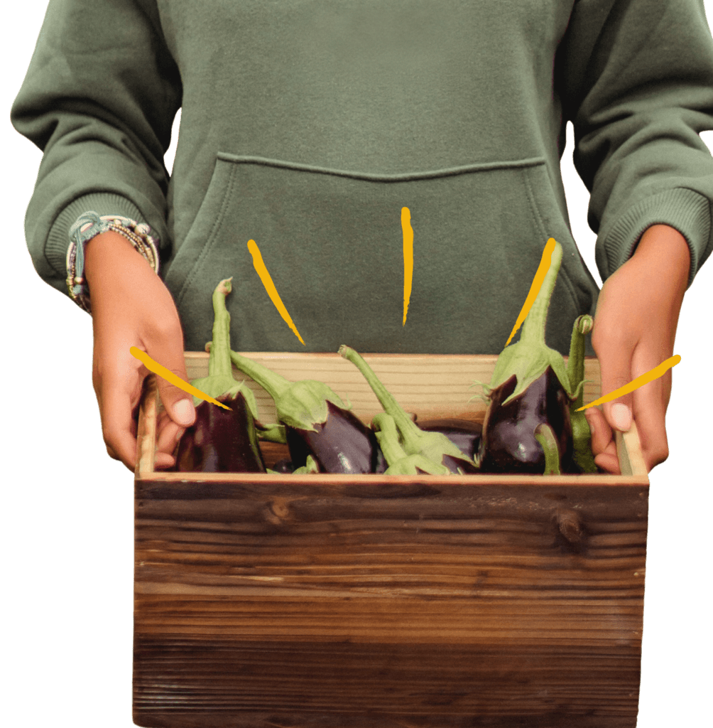 Person in green hooded sweatshirt holding wooden box full of eggplants